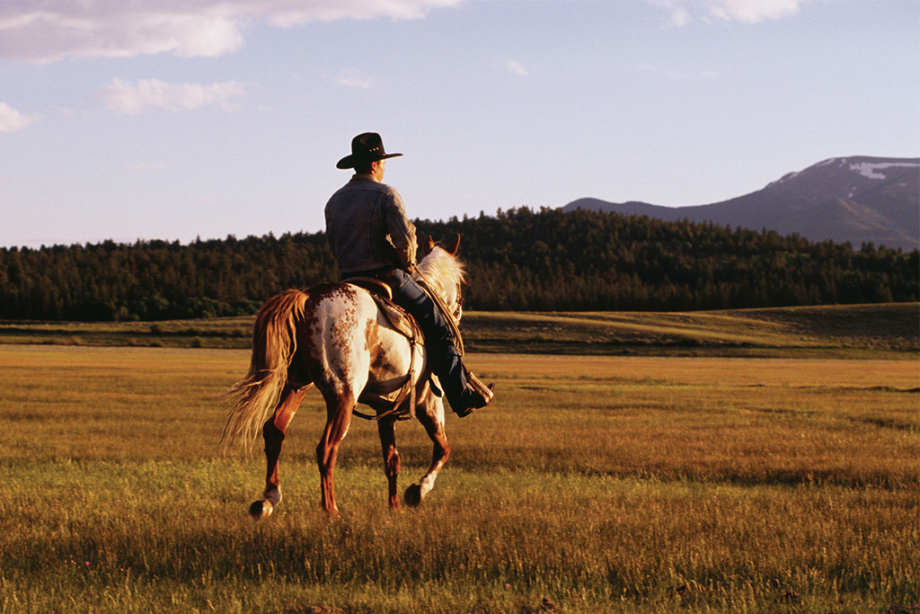 Atop A Steed: Horseback Riding in the Tennessee Smoky Mountains