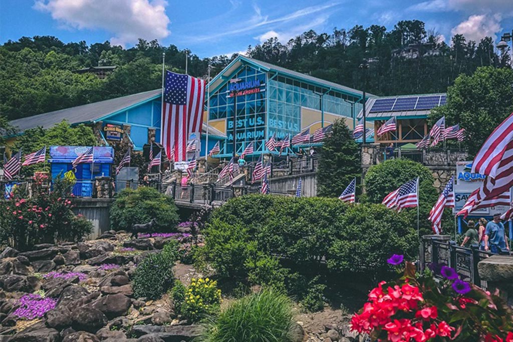 Ripley's Aquarium of the Smokies 10 Best