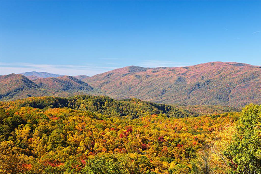 Where to View the Fall Colors in Pigeon Forge