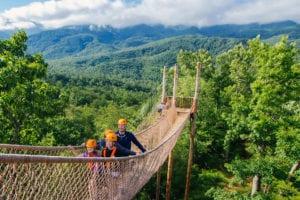 climb works bridge