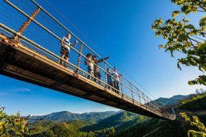 skylift park bridge