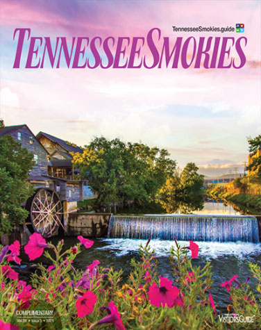 tennessee smokies visitors guide cover 2021
