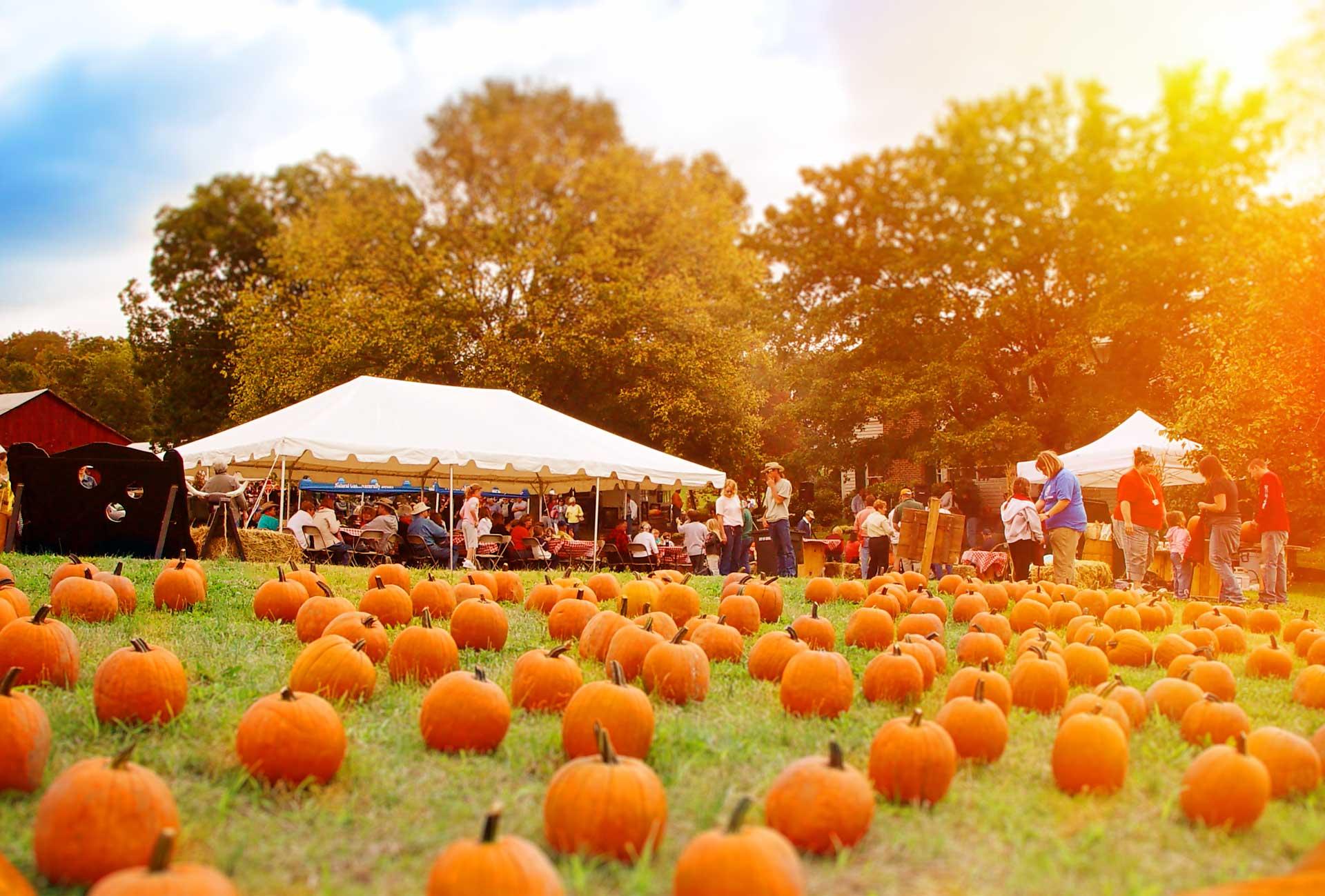 Sevierville's Harvest Fest